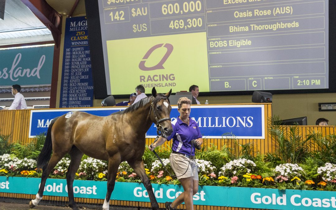 A new era in yearling sales information