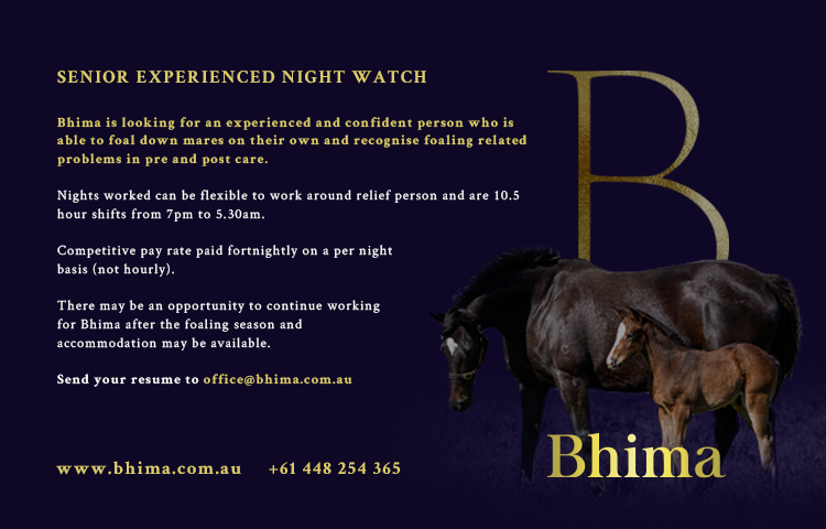 JOB OPPORTUNITY: SENIOR EXPERIENCED NIGHT WATCH
