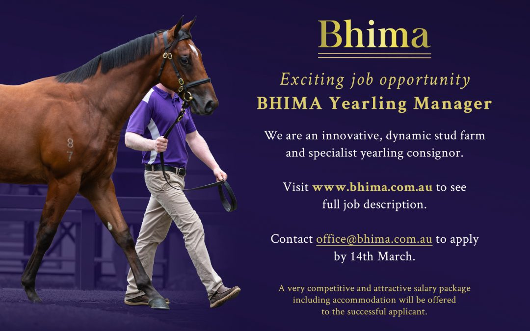 JOB OPPORTUNITY: YEARLING MANAGER